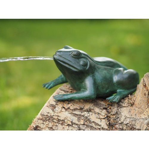 Eliassen Bronzen kikker spuitend