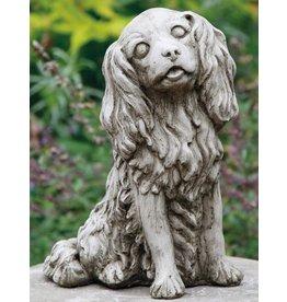 Dragonstone Cavalier King Charles dog