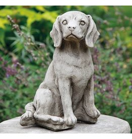 Dragonstone Beagle-Hund
