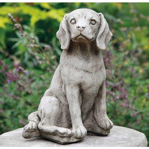 Dragonstone beagle dog