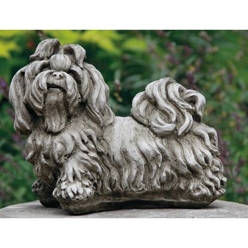 Dragonstone Shih-tzu dog