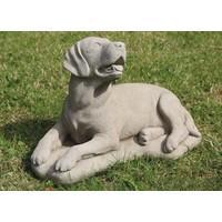 Tuinbeeld grote Labrador hond