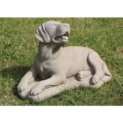 Dragonstone great Labrador