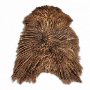 Sheepskin Icelandic brown