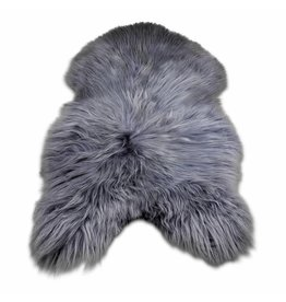 Sheepskin Icelandic gray