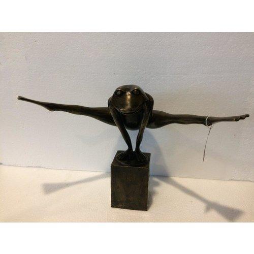 Bronze Springfrosch mittel