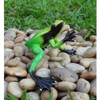 Bronze Skulptur Regenwald Frosch grün
