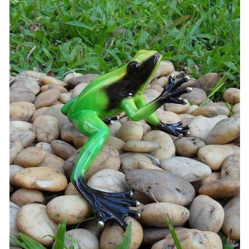 Eliassen Bronzen beeld regenwoud kikker groen