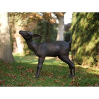 Bronze Hirsch