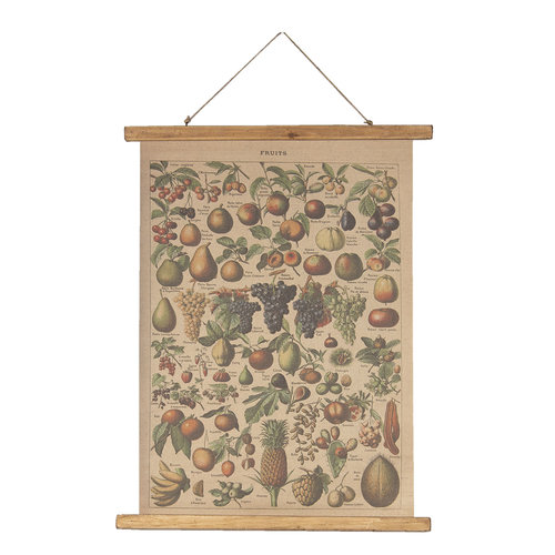 Eliassen Wall chart Fruit 55x75cm