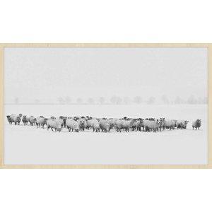 Wandkraft Gemälde Forex Herde 118x70cm