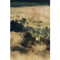 Schilderij berkenhout Wolken 148x98cm
