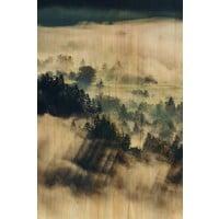 Malerei Birkenholz Wolken 148x98cm