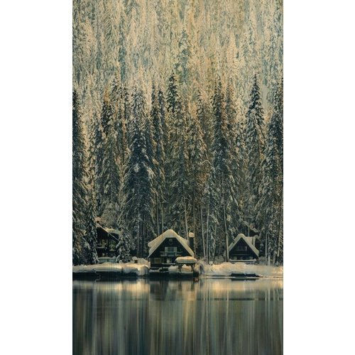 Wandkraft Painting birch wood Sweden 118x70cm