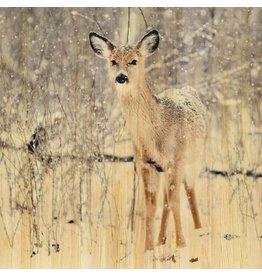 Wandkraft Schilderij berkenhout Hert 74x74cm