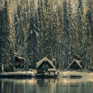 Wandkraft Malerei Birkenholz Schweden 74x74cm