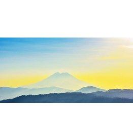 Wandkraft Malerei Dibond Yellow 98x48cm