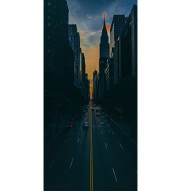 Wandkraft Painting dibond stainless steel City 98x48cm