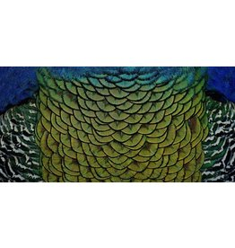 Wandkraft Painting dibond stainless steel Elegant 98x48cm
