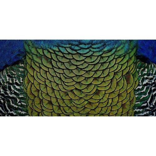 Wandkraft Malerei Dibond Edelstahl Elegant 98x48cm
