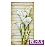 Primus 3d schilderij metaal 60x120cm aronskelken