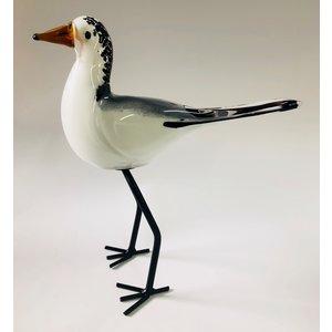 Image glass Gull