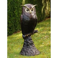 Image bronze owl on rock