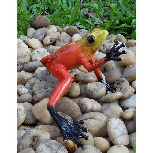 Eliassen Beeld brons regenwoudkikker rood