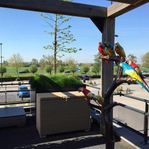 Eliassen Beeld brons boom met papagaaien