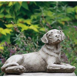 Dragonstone Moderate Labrador