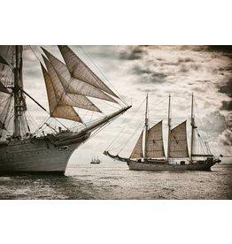 Eliassen Glas-schilderij 80x120cm Sailers