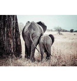 MondiArt Aluminum painting Elephant with calf