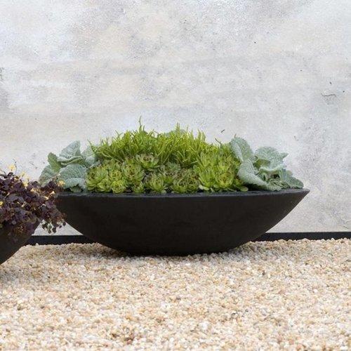Adezz Producten Plant scale Cedar Adezz Polyester in 3 Größen