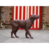 Bronzen labrador