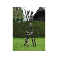 Bronzen kinderen op een ladder