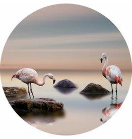 Gave Glass painting around flamingos diameter 80cm
