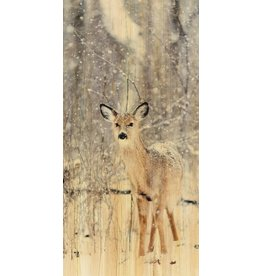 Wandkraft Painting birch wood Deer 48x98cm