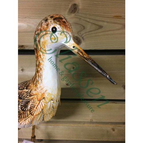 Vogel Eisen Sandpiper Kopf nach oben