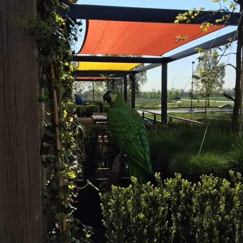 Eliassen Beeld brons groene papagaai op boomstronk