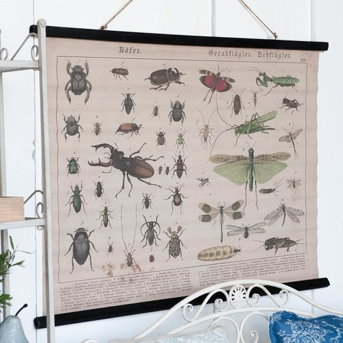 Eliassen Wall card Insects 105x76cm
