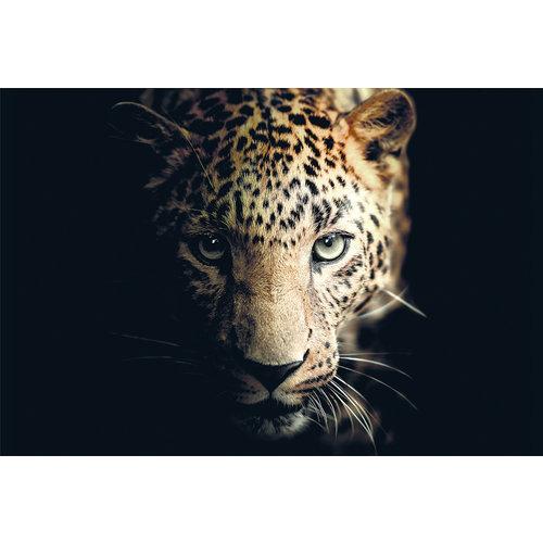 Ter Halle Glasmalerei 80x120 Panther