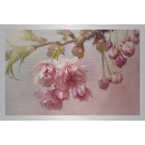 Dibond schilderij Kersen bloesem 148x98cm