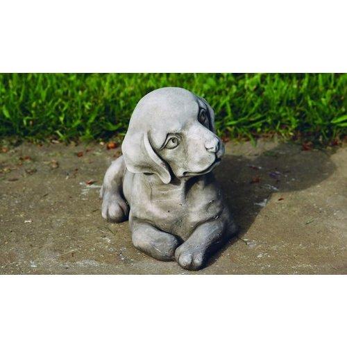 Garden image puppie dog