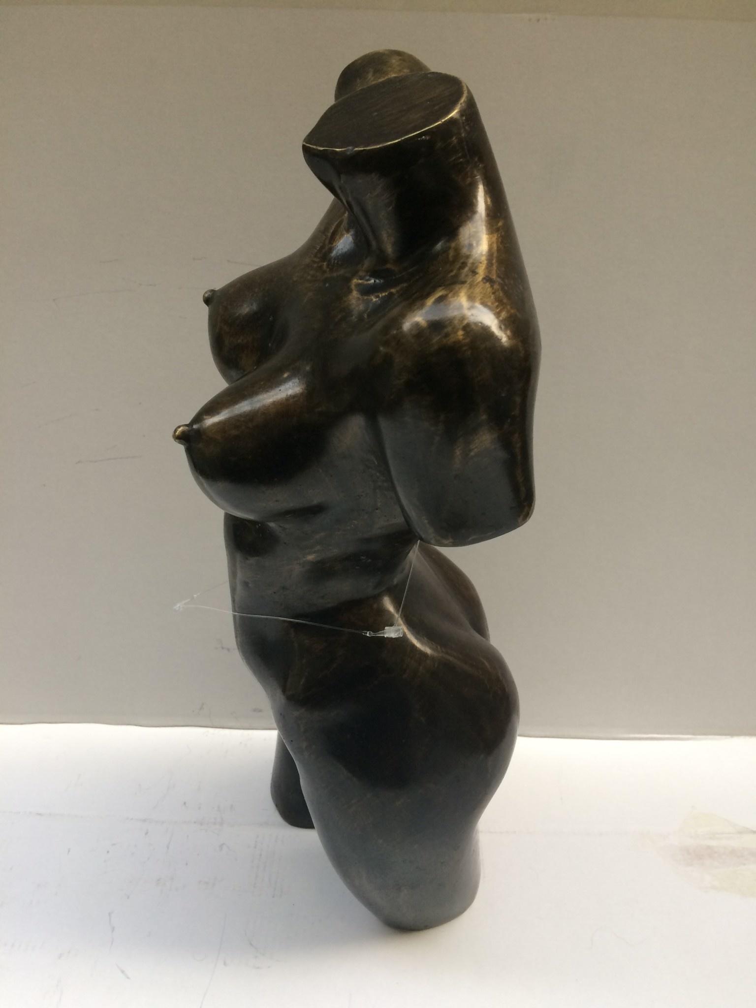 Bronzetorso