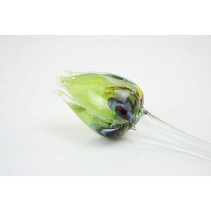 Blumenglas Tulpe multi grün
