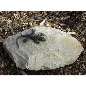 Bronze lizard on rock