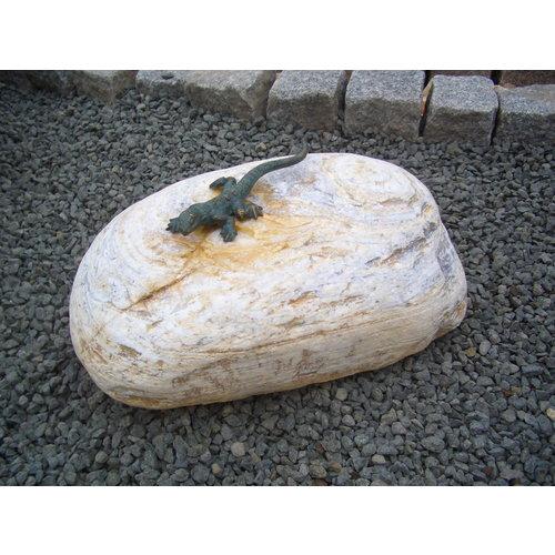 Bronze Eidechse groß auf Felsbrocken