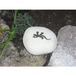 Mini salamander bronze on boulder