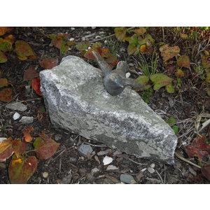 Bronzevogel breitete Flügel auf Stein aus