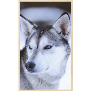 Glasmalerei Wolf 17x118cm